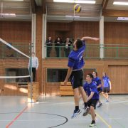 TSG Wilhelmsdorf Volleyball Rueckrunde 2016 2017