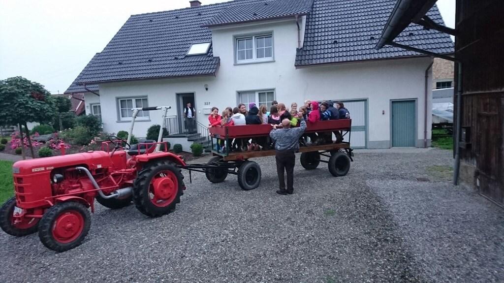TSG Wilhelmsdorf Reiten Sommerreiterferien 2016